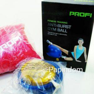 Фитбол 65 Мяч для фитнеса Profi с насосом